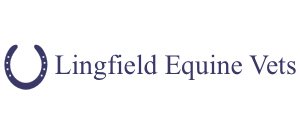 Lingfield Equine
